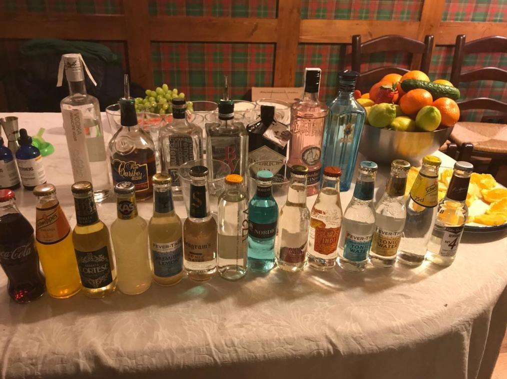 Cata de gin-tonics en Bilbao