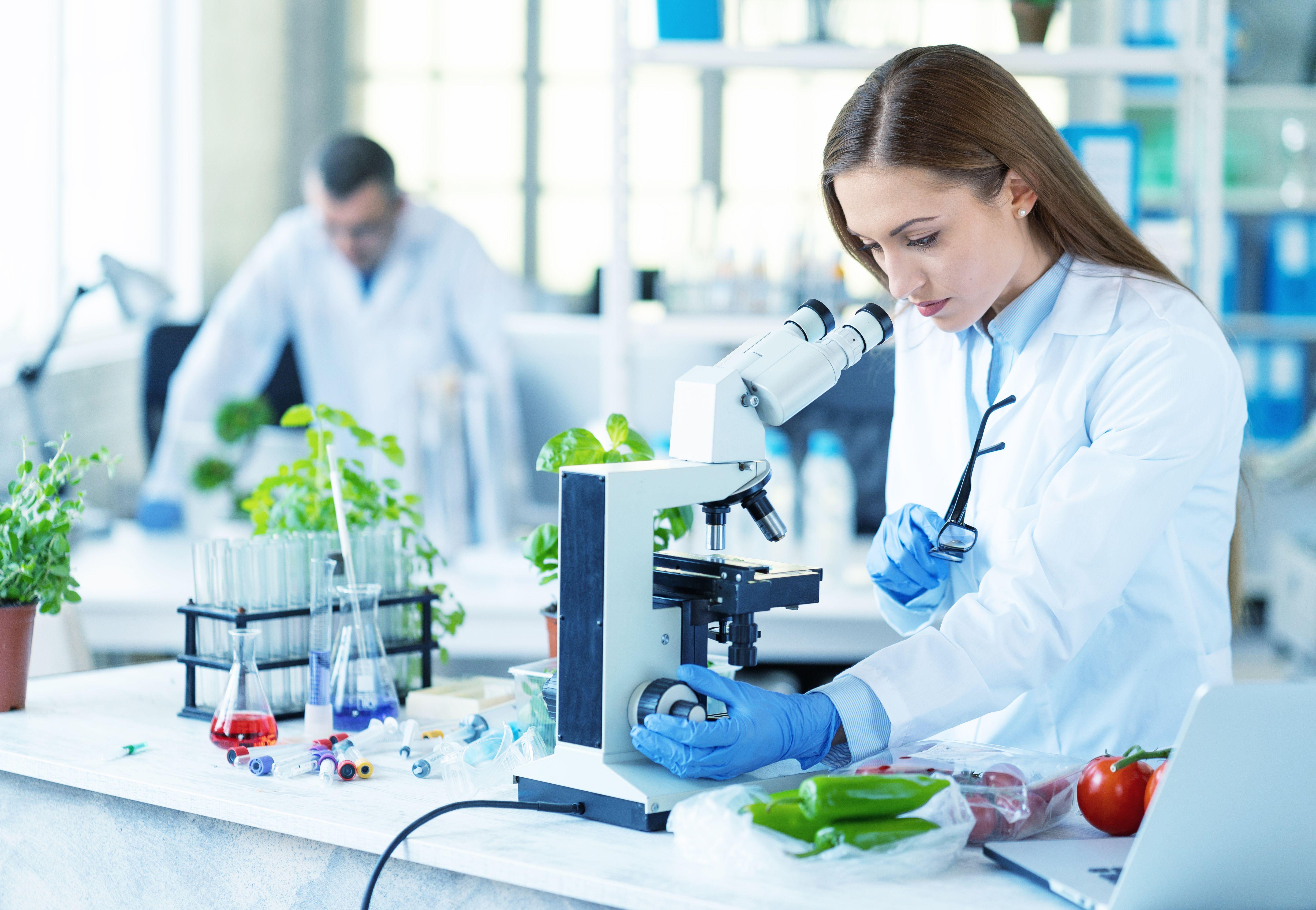 Alimentos: Servicios de Laboratorio Aquyma