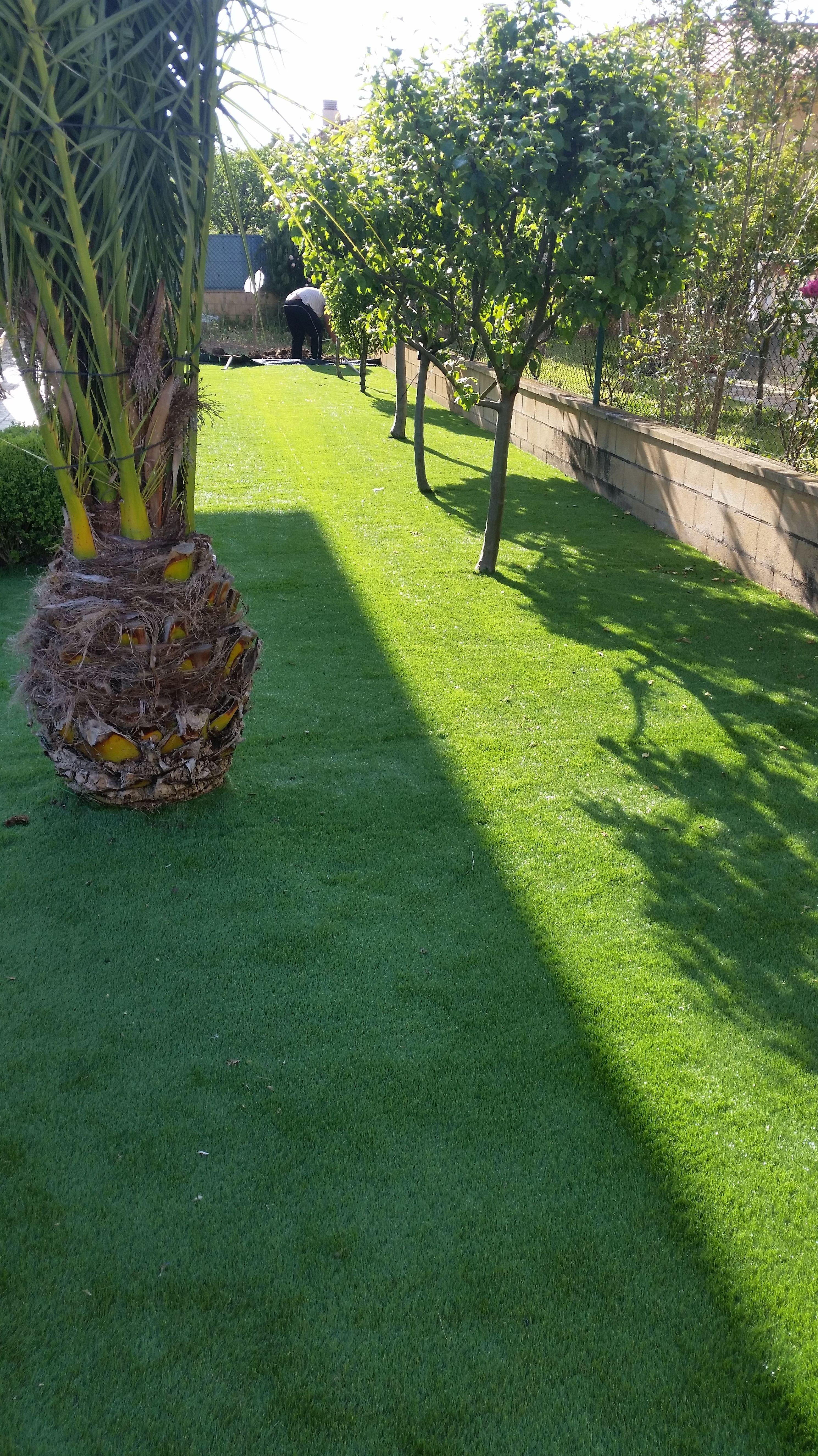 Instalación y mantenimiento de césped en jardines