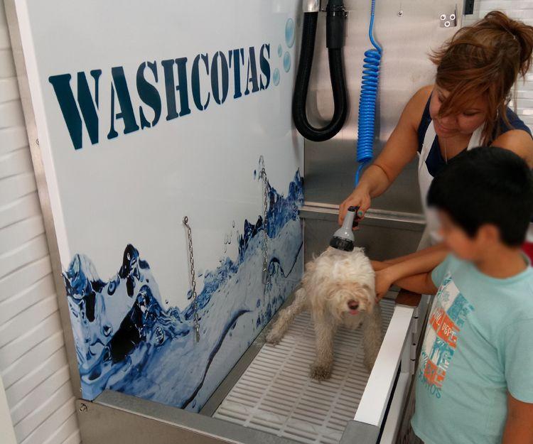 Lavado de mascotas en Carabanchel