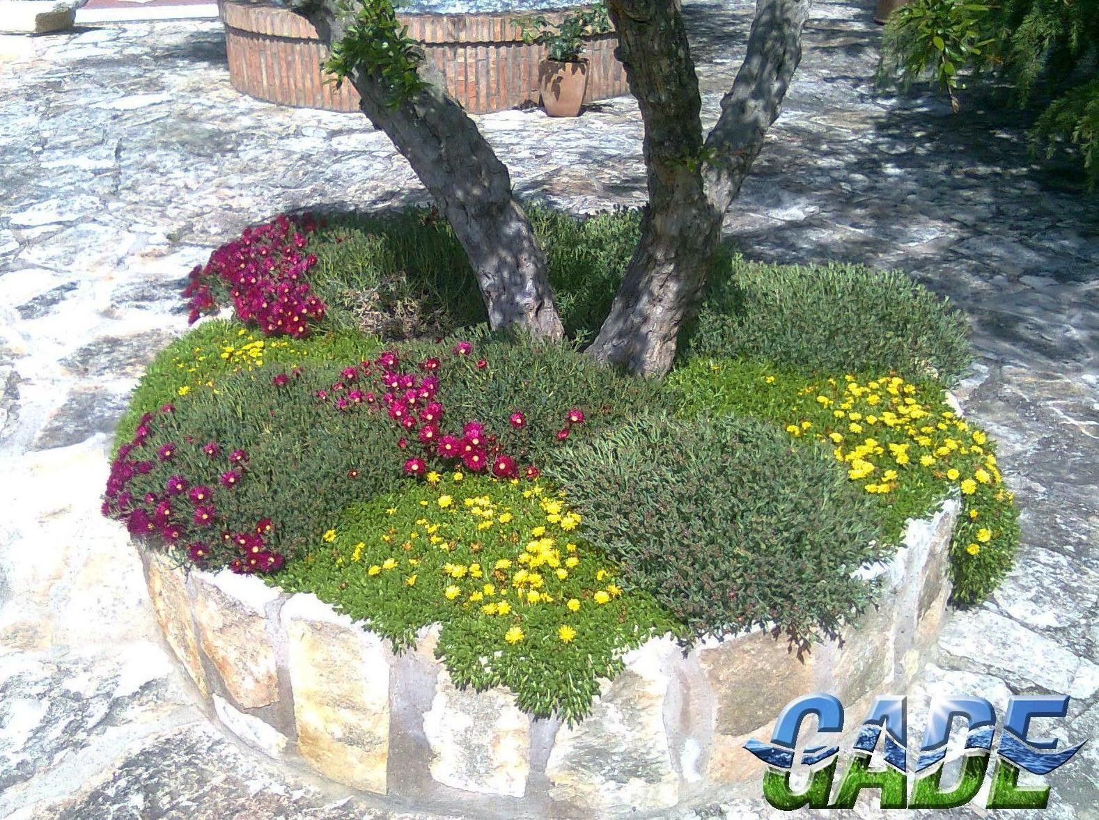 Foto 20 de Instalación de Piscinas en Logroño | Gade Piscinas y Jardines