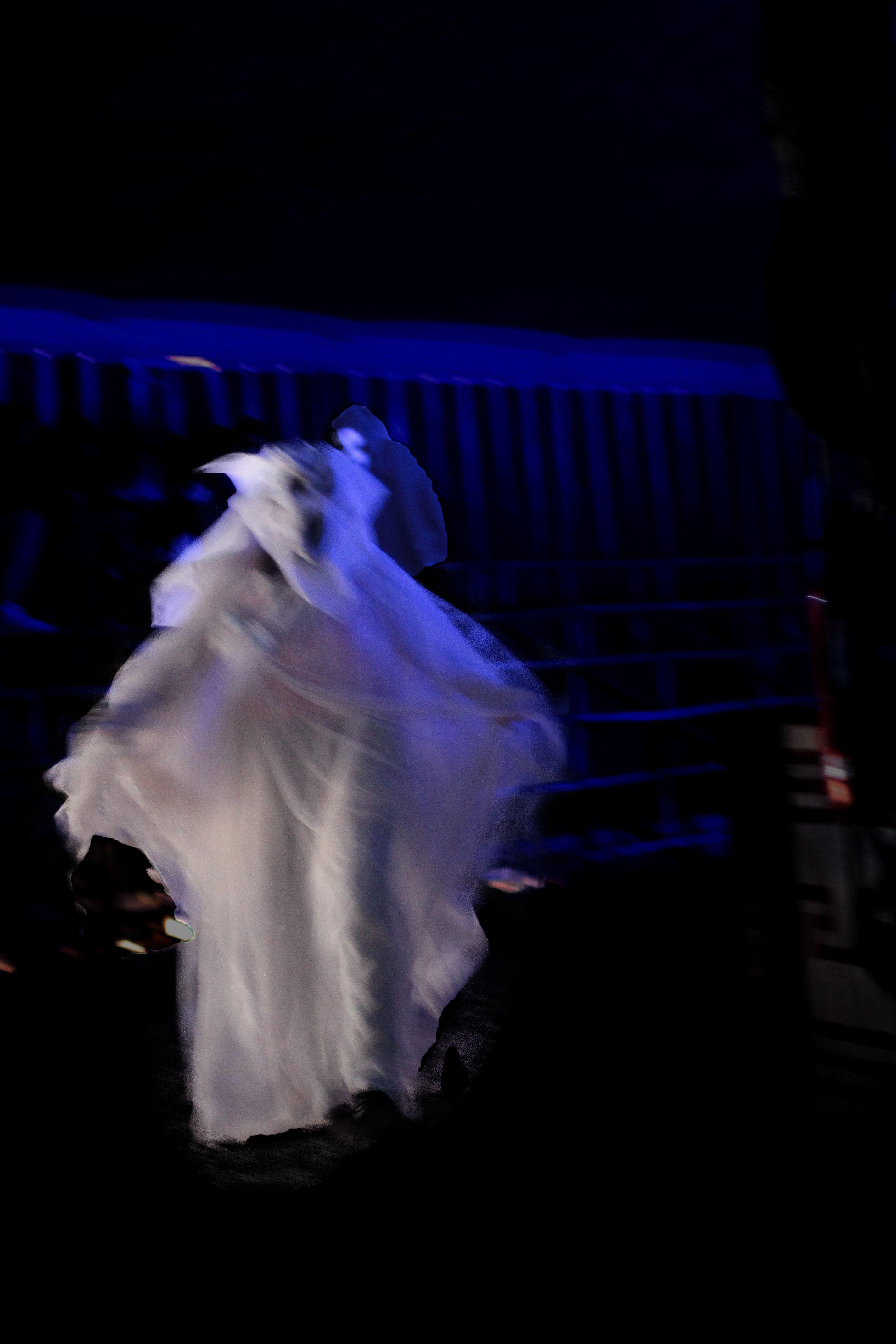 Foto 12 de Actuaciones artísticas y musicales en  | Circo Del Terror Familiar