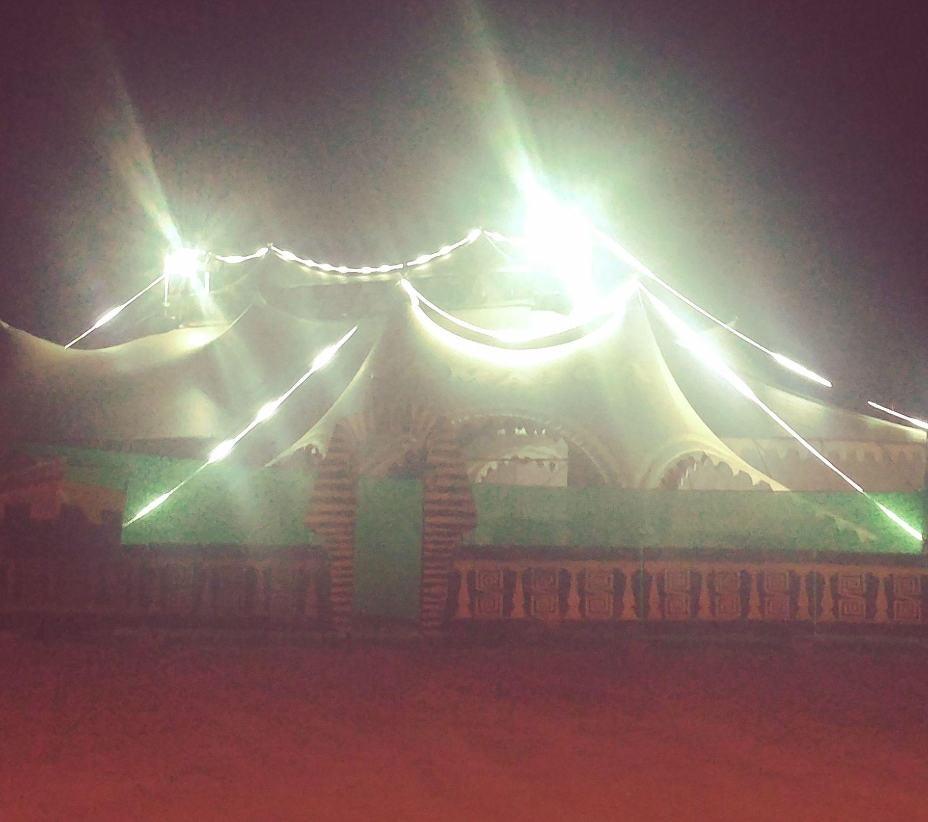 Foto 77 de Actuaciones artísticas y musicales en  | Circo Del Terror Familiar