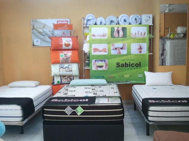 Línea de Productos Sabicol