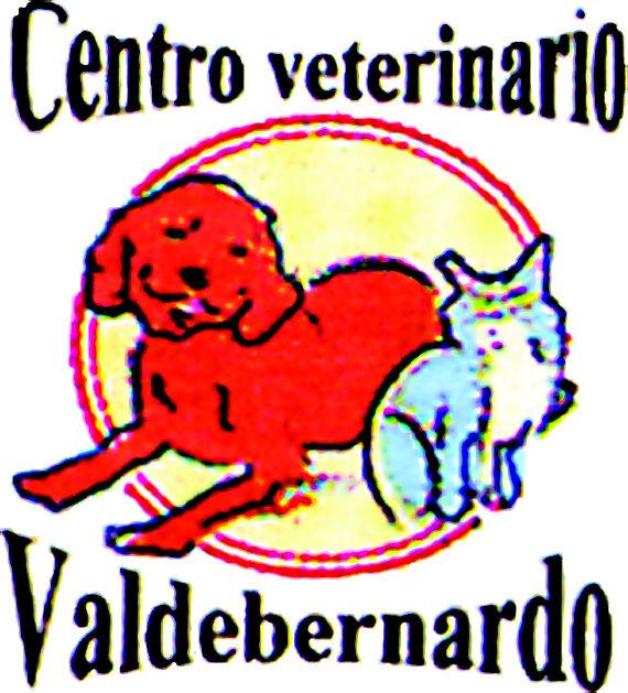 Foto 1 de Veterinarios en Madrid | Centro Veterinario Valdebernardo