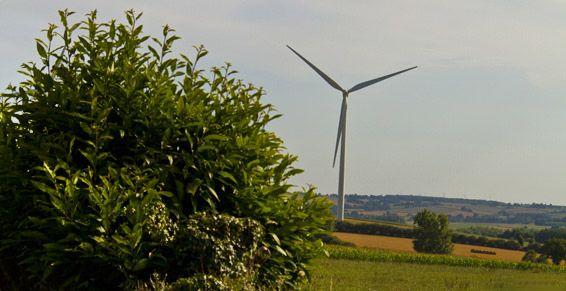 Mini energía eólica: Servicios de Electricidad Miranda
