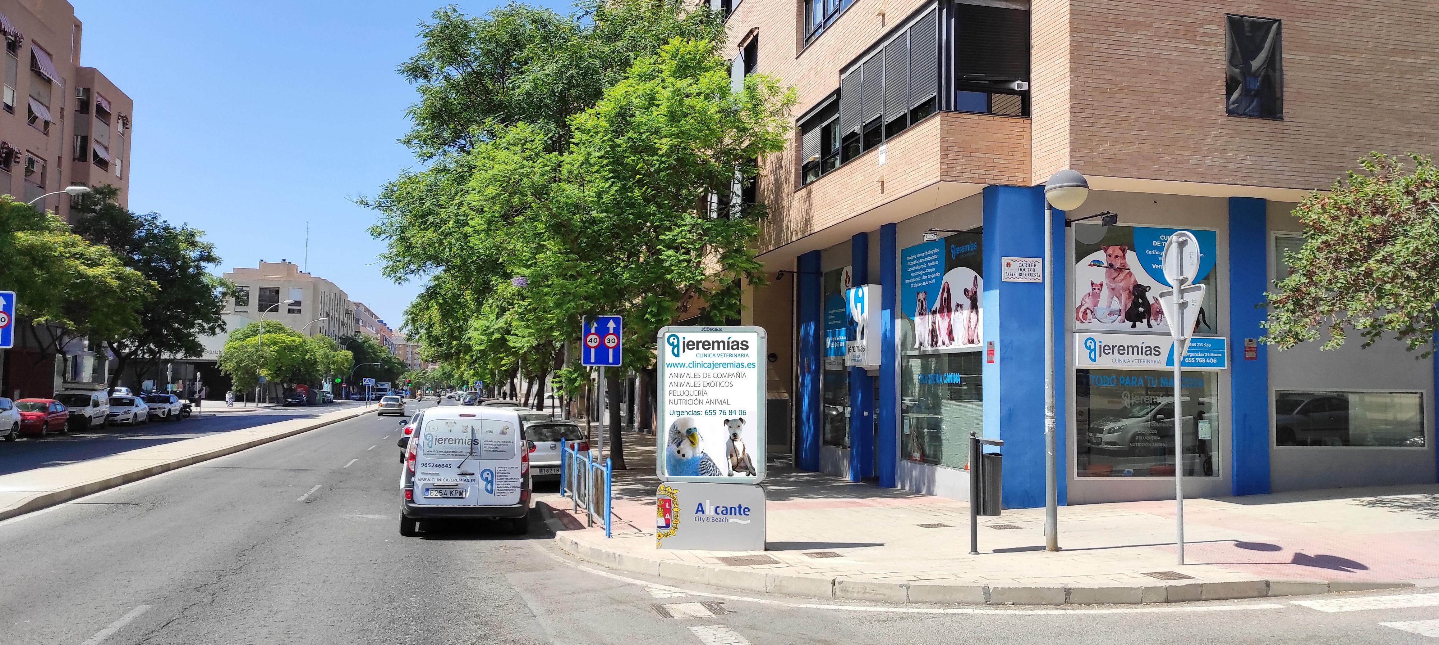 Foto 9 de Clínica veterinaria en    Clínica Jeremías