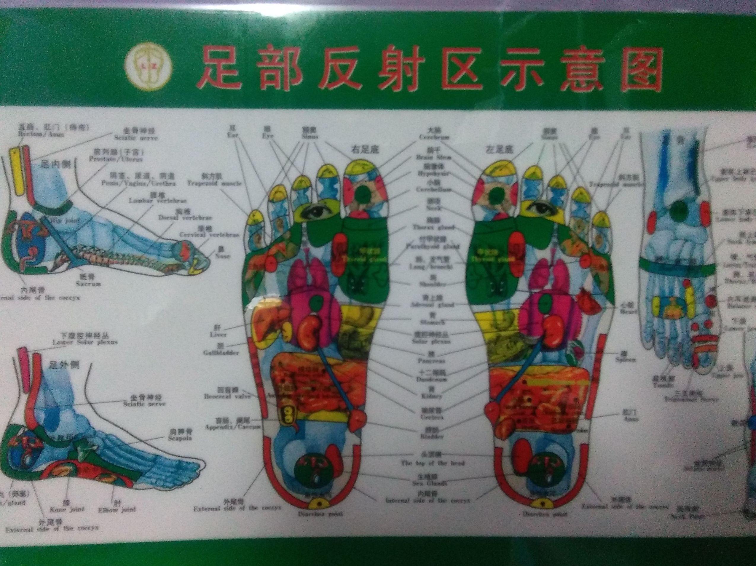 REFLEXOLOGIA CHINA