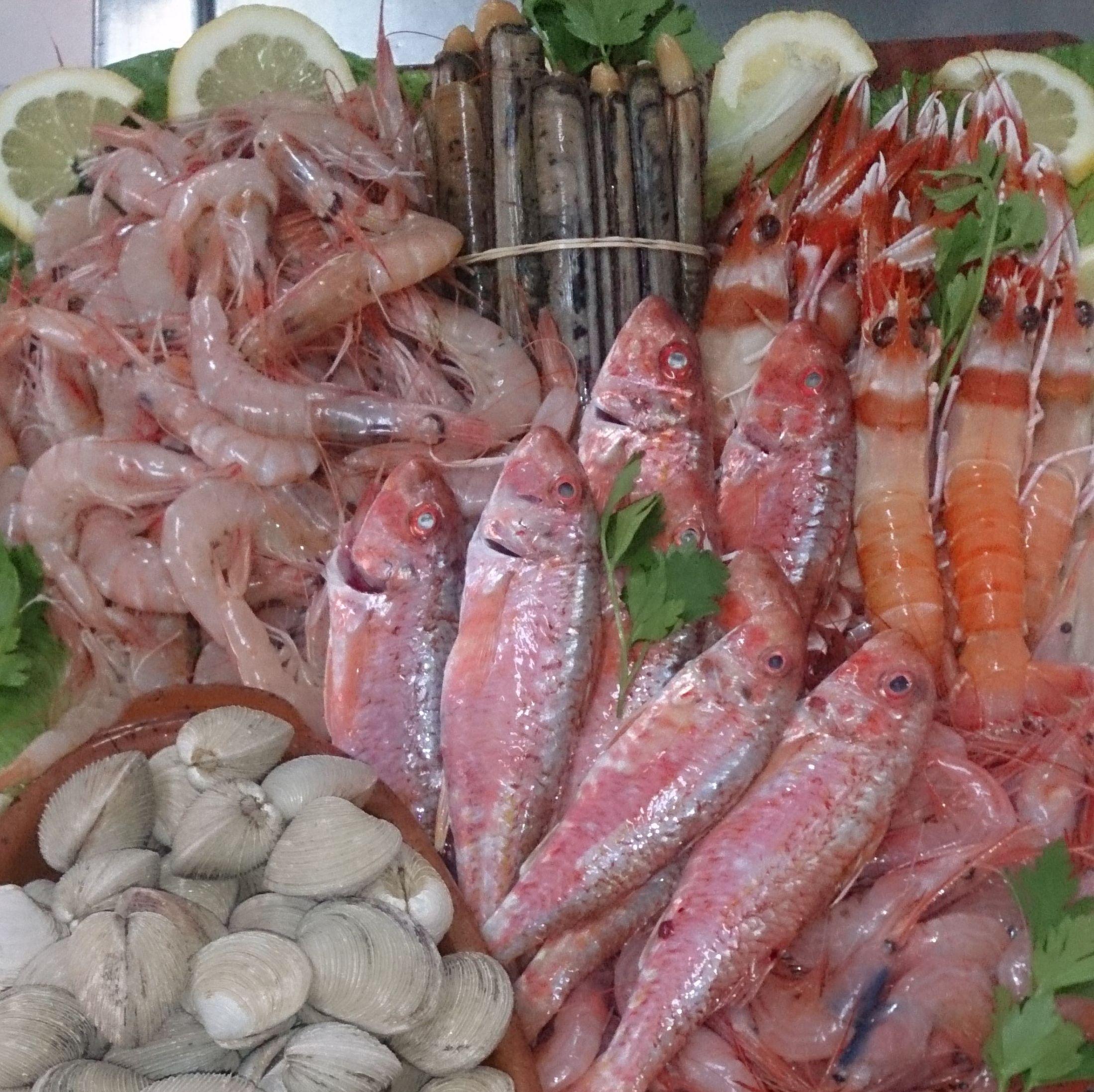 Pescado fresco para nuestros platos