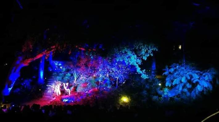 Hara el musical Jardín Botánico