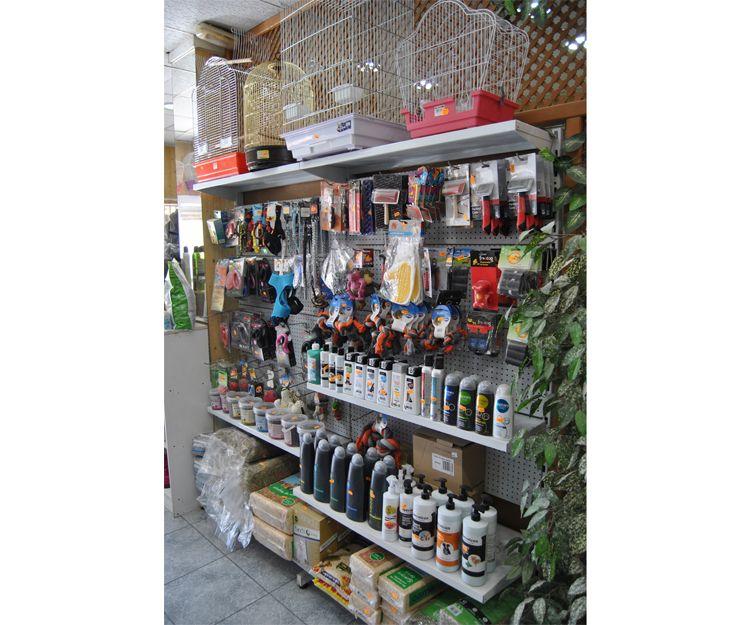 Tienda de complementos para mascotas y canarios en Cartagena