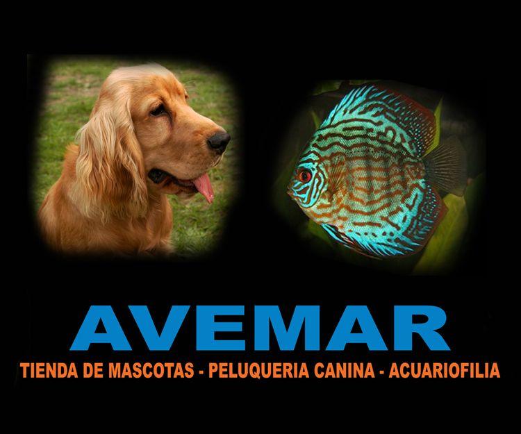 Tienda de mascotas en Cartagena