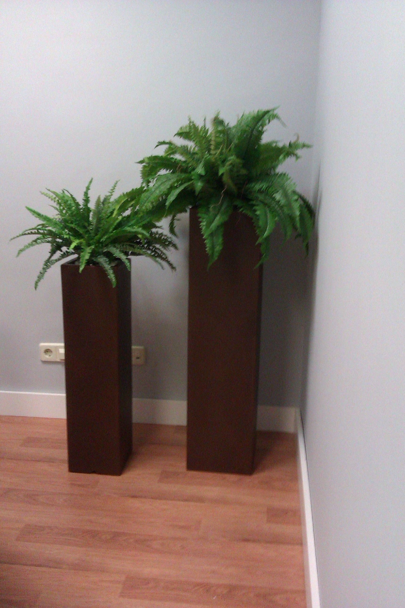 Plantas artificiales productos de flores madrid - Arboles artificiales madrid ...