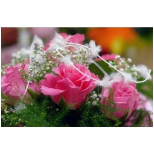 Centros: Servicios de Alternatives Florals