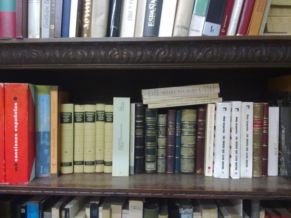 Antropología  Pedagogía  Política y Sociología: Materias de Ábaco Libros Cuatro Caminos