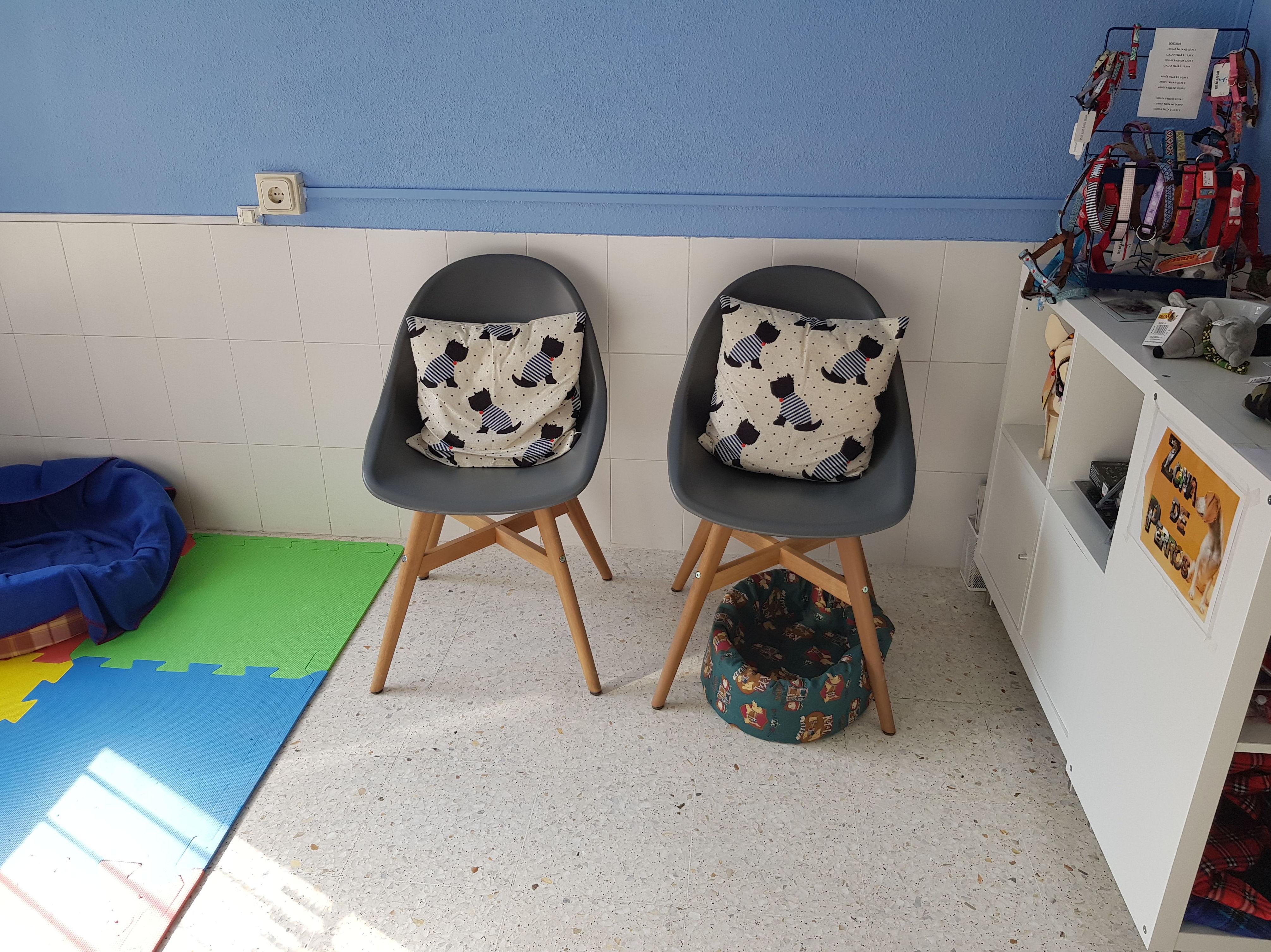 Sala de espera perros centro veterinario Madrid