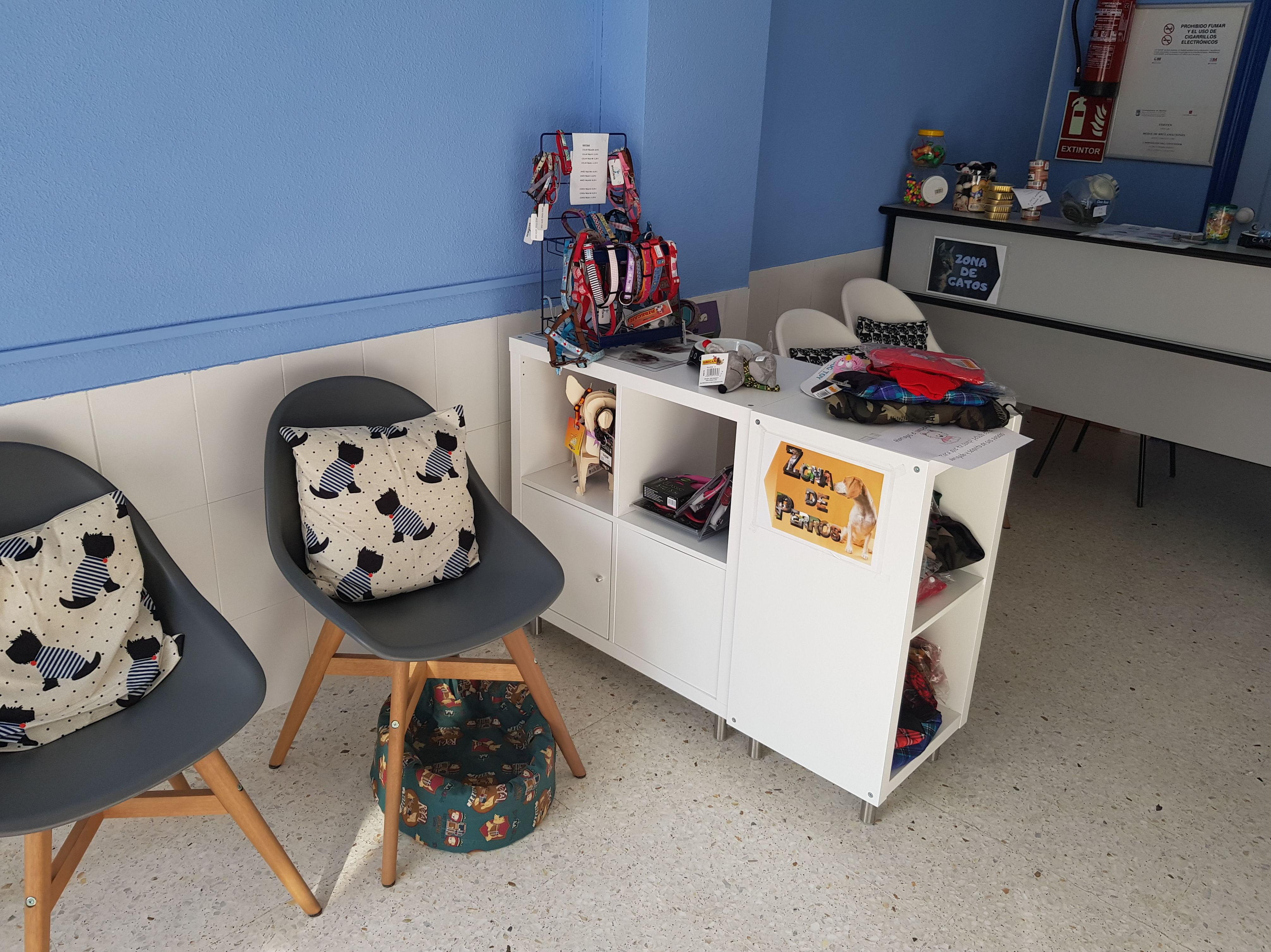 Sala de espera clínica veterinaria Madrid