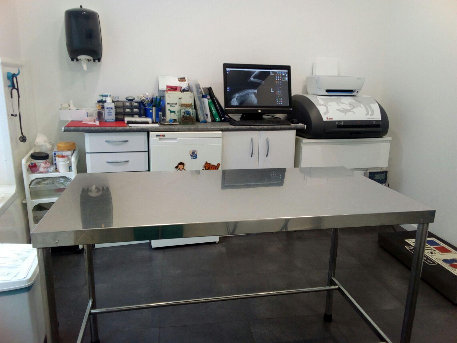 Diagnóstico por imagen: Servicios veterinarios de C. V. Gabriel Usera
