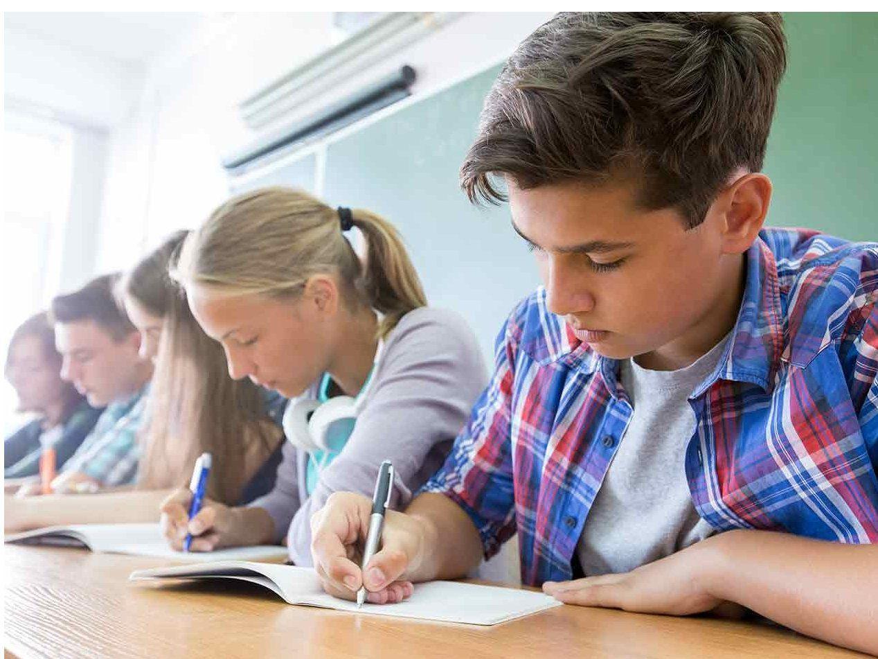Nivel exigido para acabar el Colegio Bilingüe