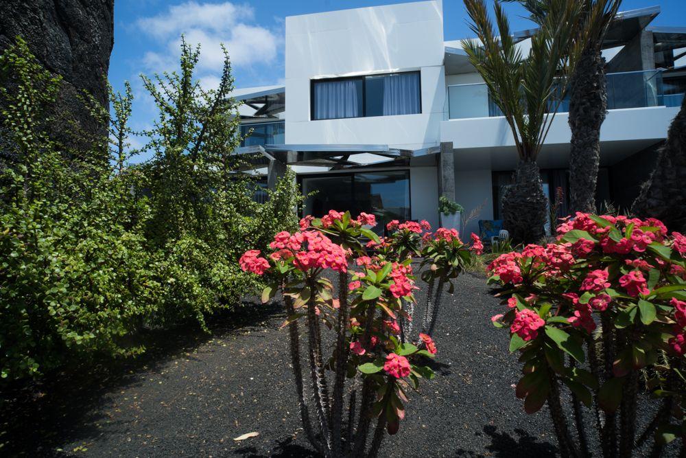 Jardinero profesional Lanzarote