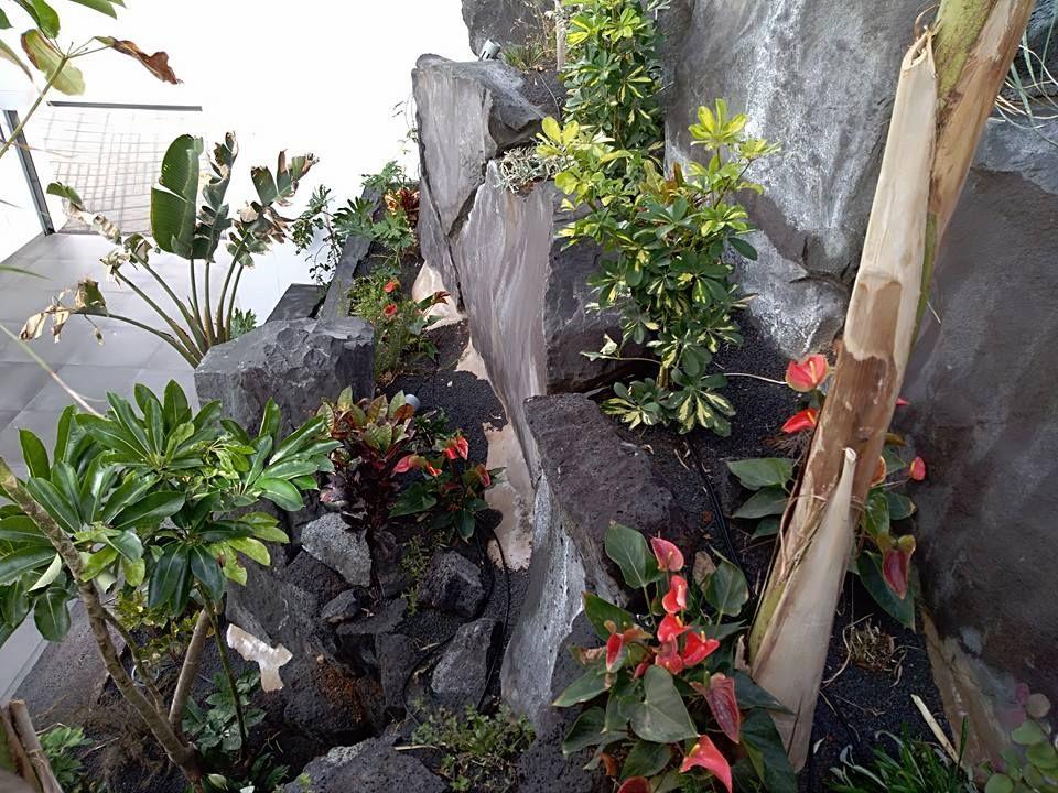 Bancales de jardineras en Las Palmas