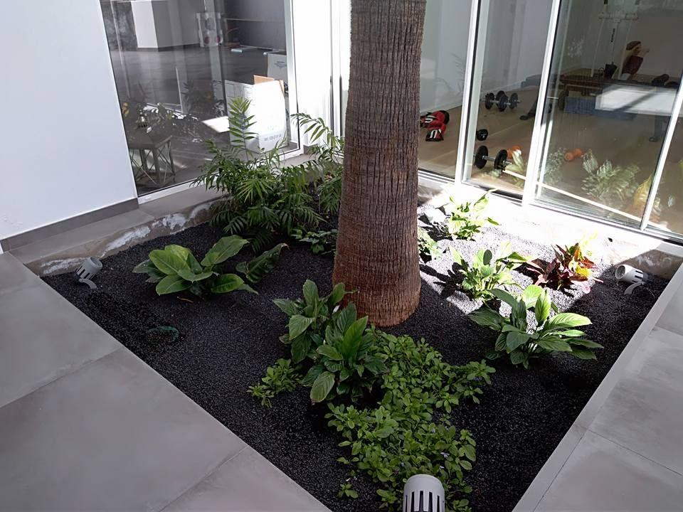 Construcción y mantenimiento de jardines en Las Palmas
