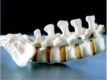 Foto 1 de Médicos especialistas Cirugía ortopédica y Traumatología en Úbeda   Clínica Traumatológica Dr. Esqueta