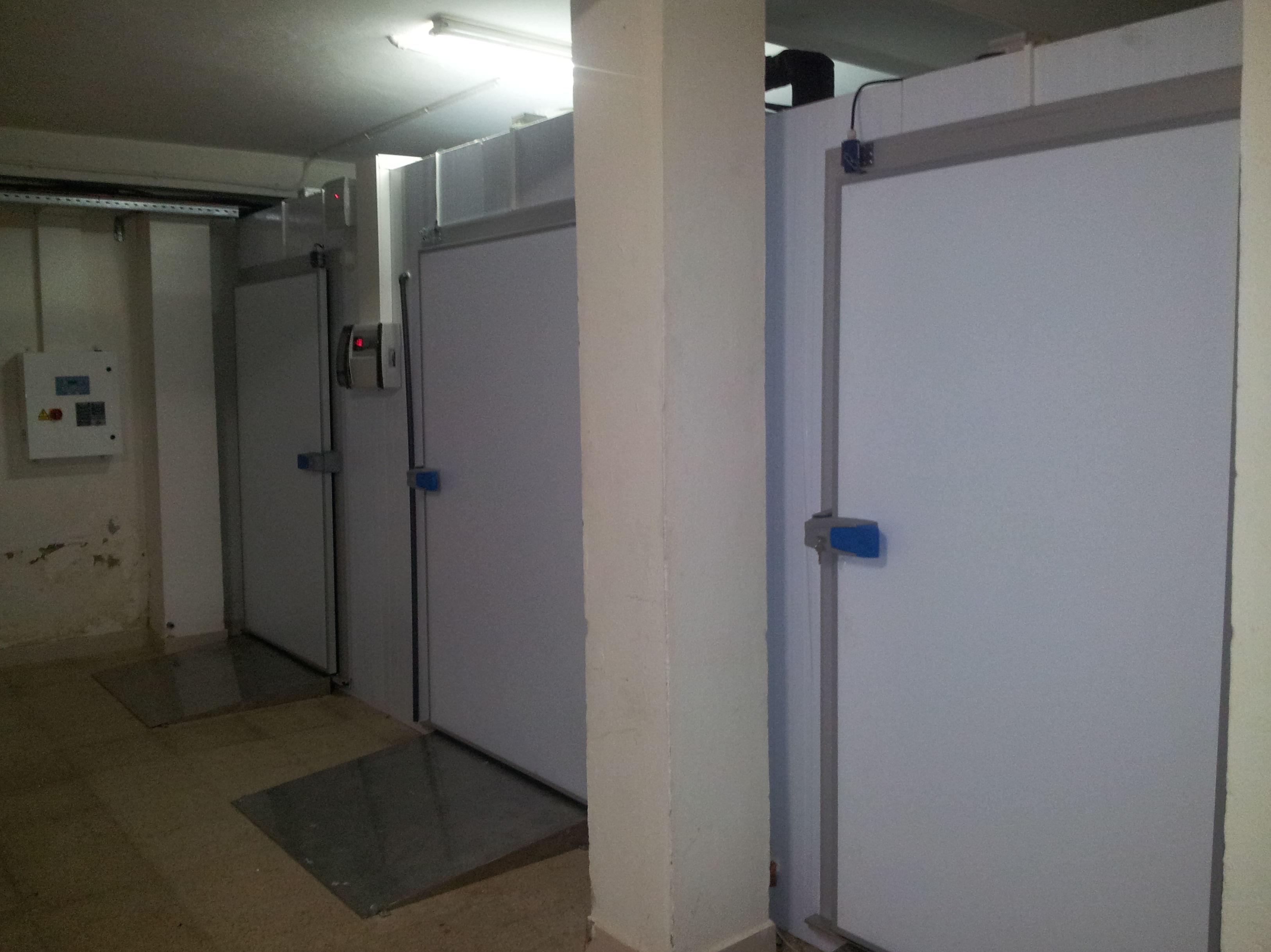 Instalación cámara congelados + túnel ultracongelación