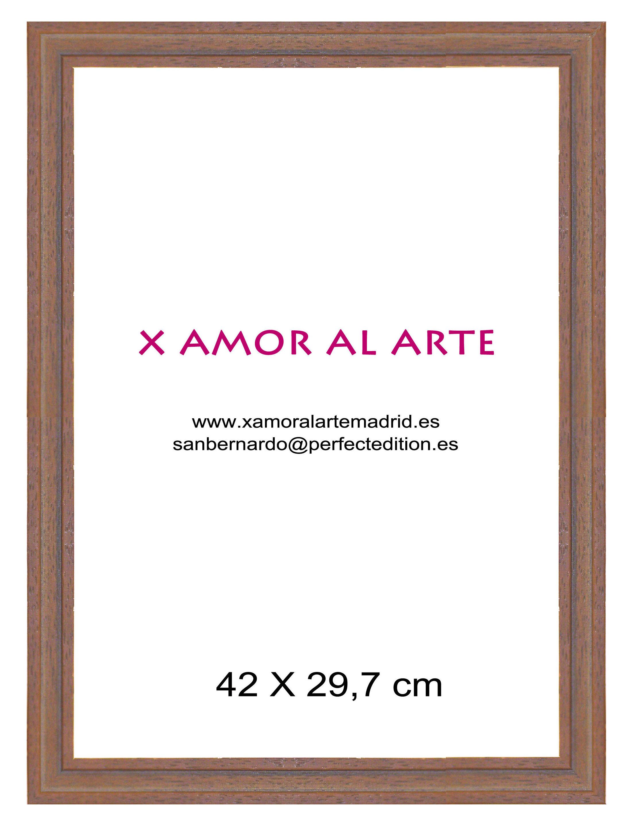 MARCO ESTANDAR 42 X 29,7: Catálogo de X Amor Al Arte