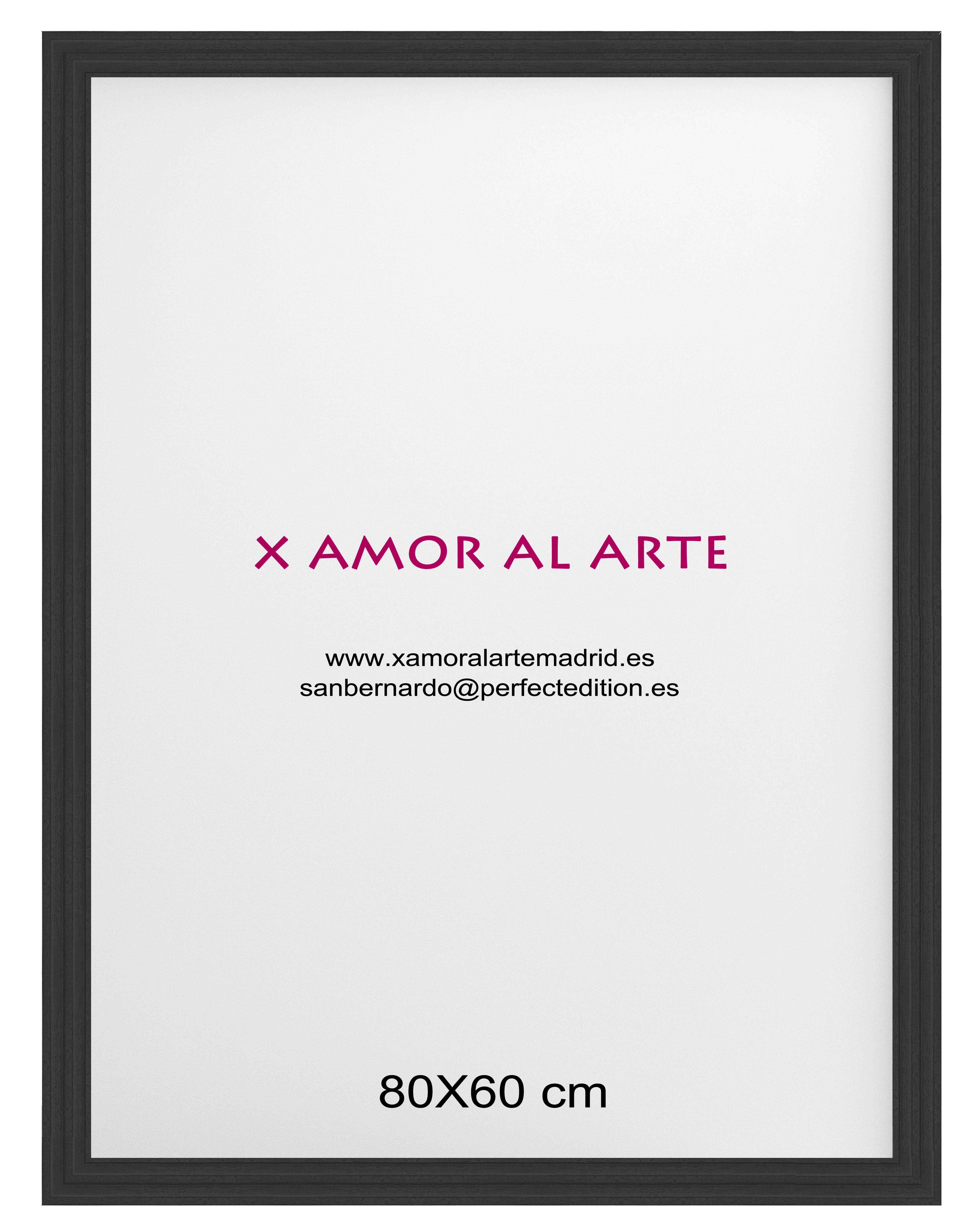 MARCO ESTANDAR 80 x 60: Catálogo de X Amor Al Arte