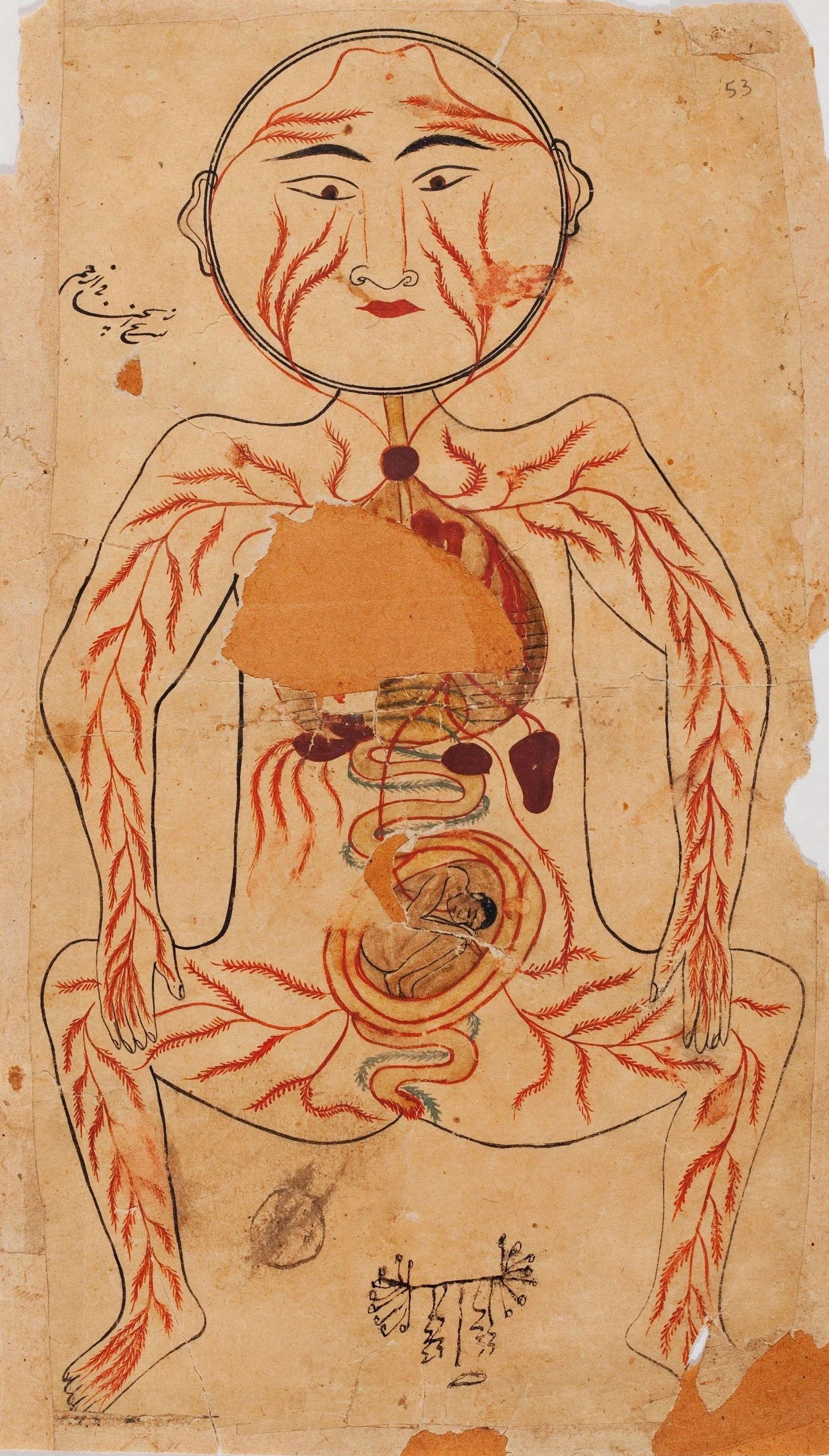 Anatomia 2: CATALOGO de Quadrocomio La Casa de los Cuadros desde 1968