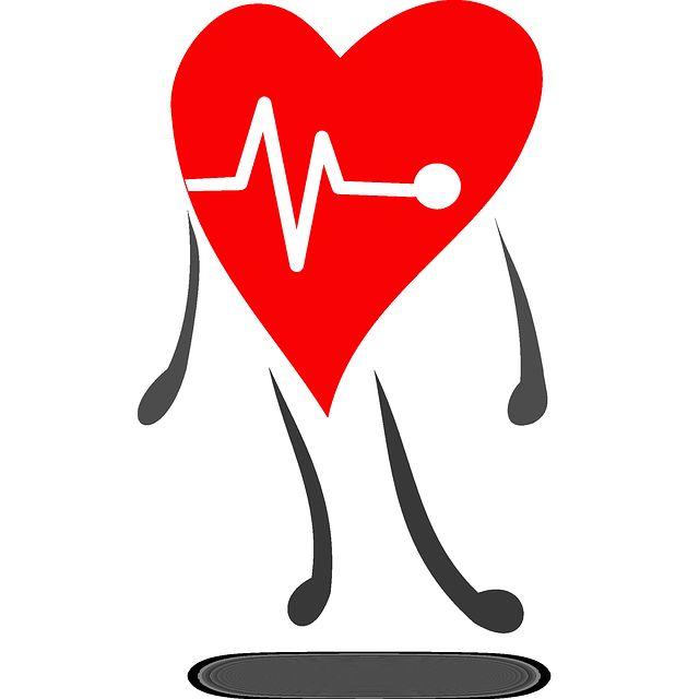 Cardiología: Servicios de Clínica Veterinaria Inferniño
