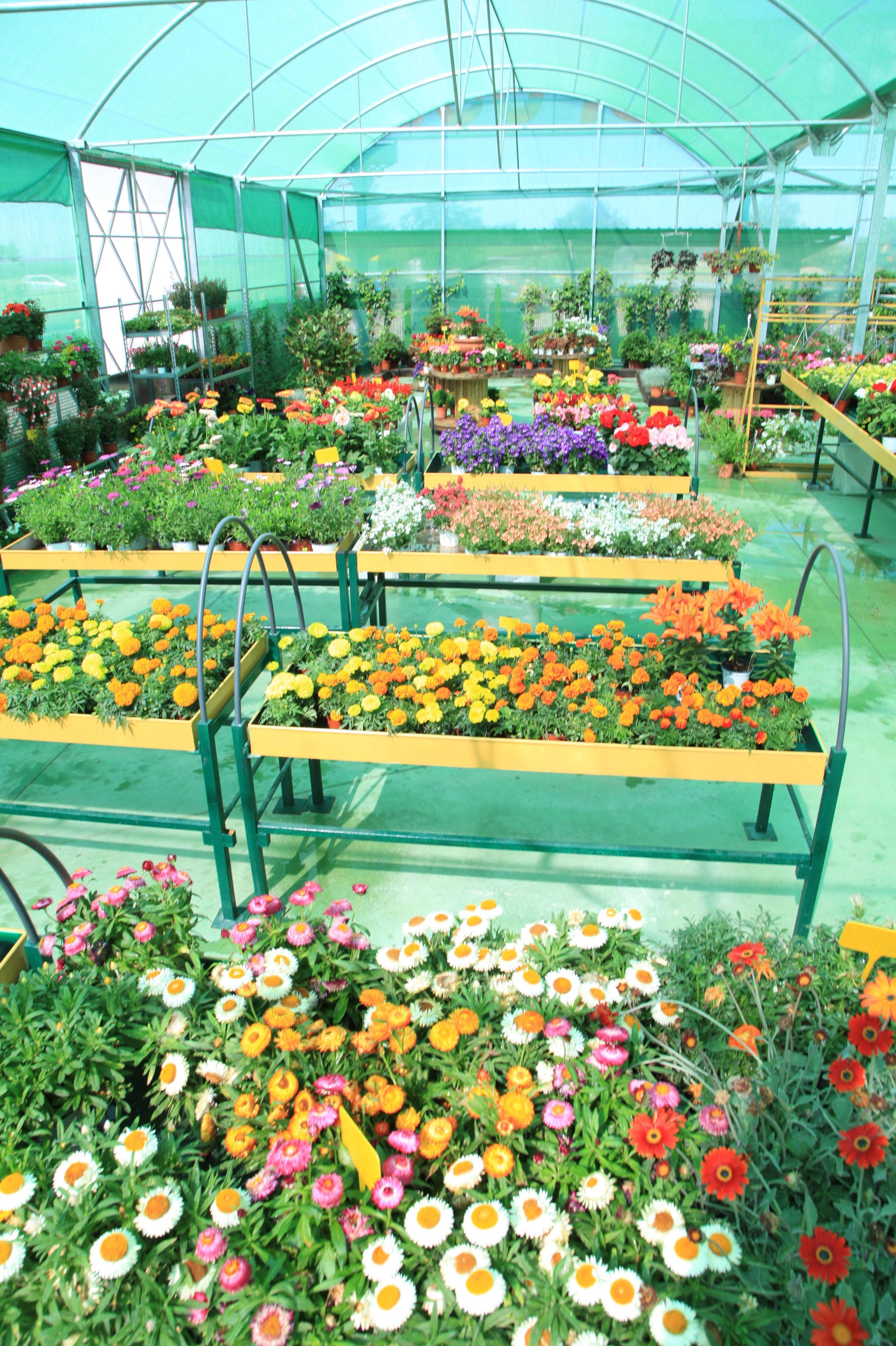 Foto 18 de Material y accesorios de jardinería en Fuente el Saz de Jarama | Mofusa