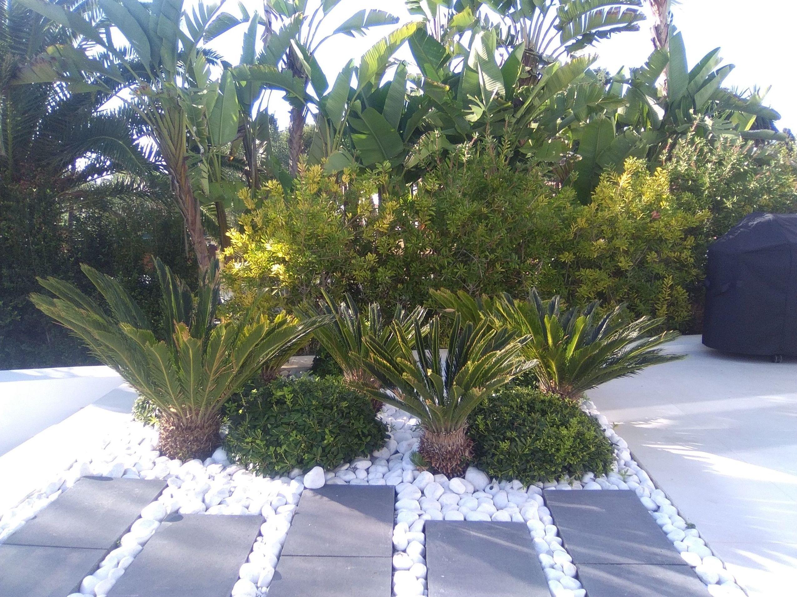 Foto 5 de Diseño y mantenimiento de jardines en  | Vivero Fantastic Gardens