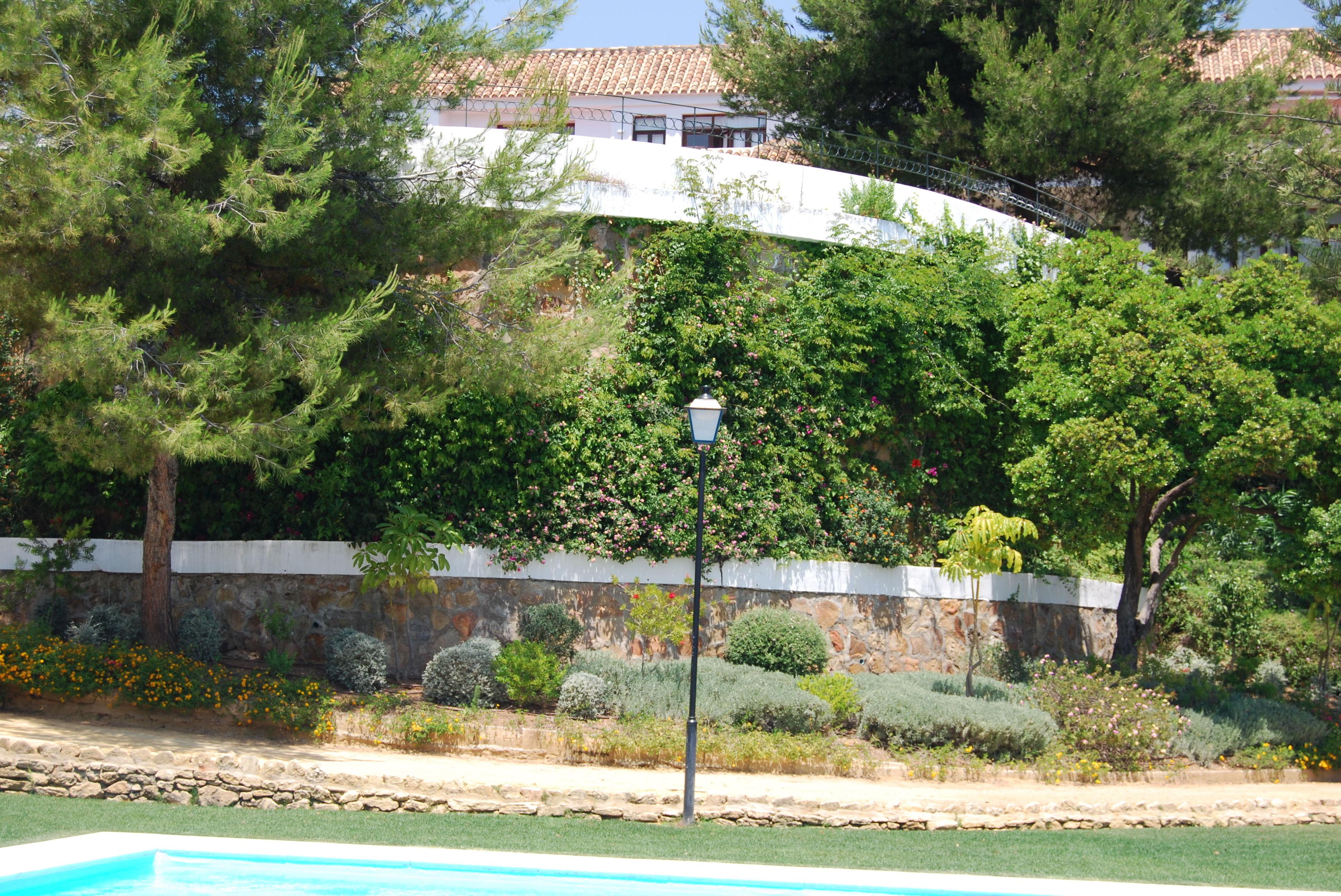 Realización del jardín de la Universidad de Marbella (MIUC)