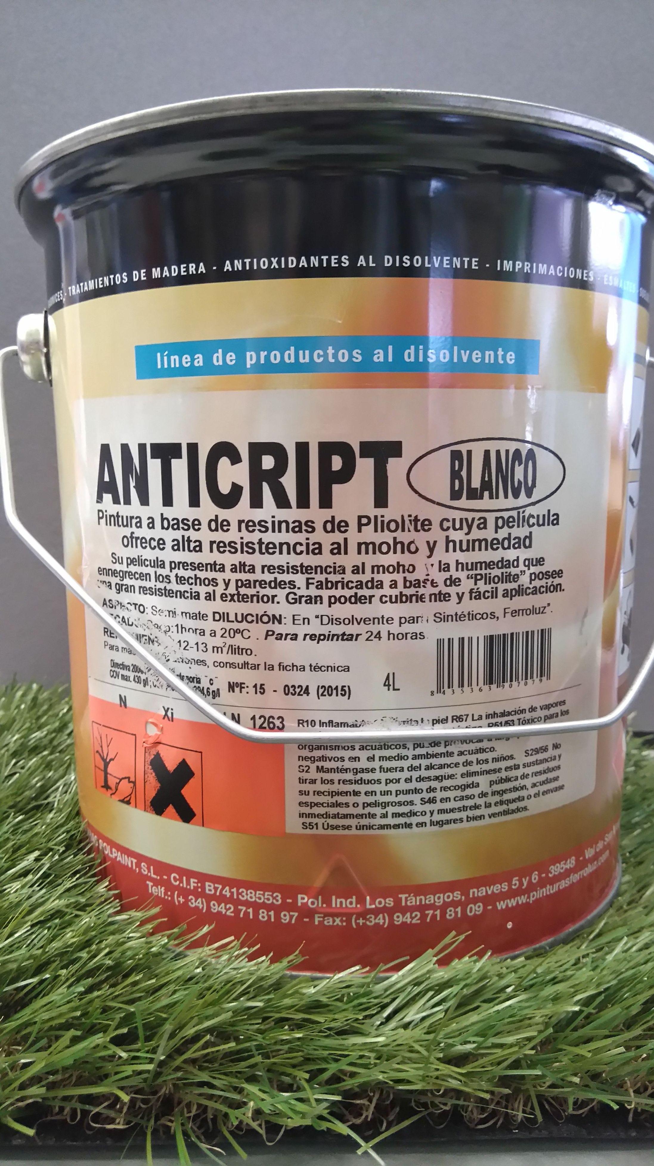 Protector contra la humedad FERROLUZ base disolvente ANTICRIPT: Pinturas y Complementos de Sa&Vi
