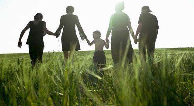 Abogaymedia, Divorcios. Familia