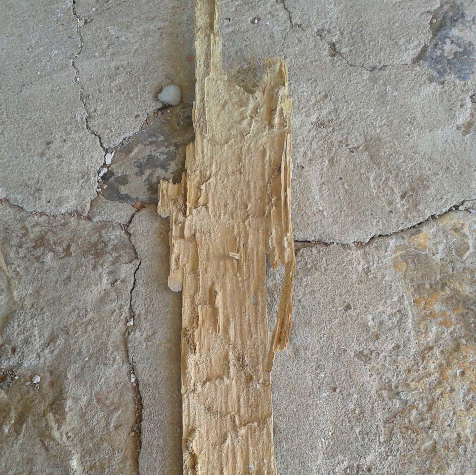 Resto de viga de madera deborada por las termitas