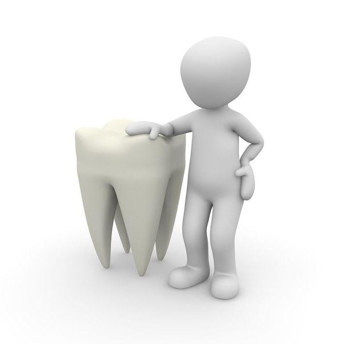 Endodoncia: Tratamientos de Clínica BP Bucal y Podológica