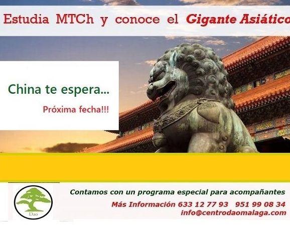 Prácticas en China: Cursos y tratamientos de Centro Dao Málaga