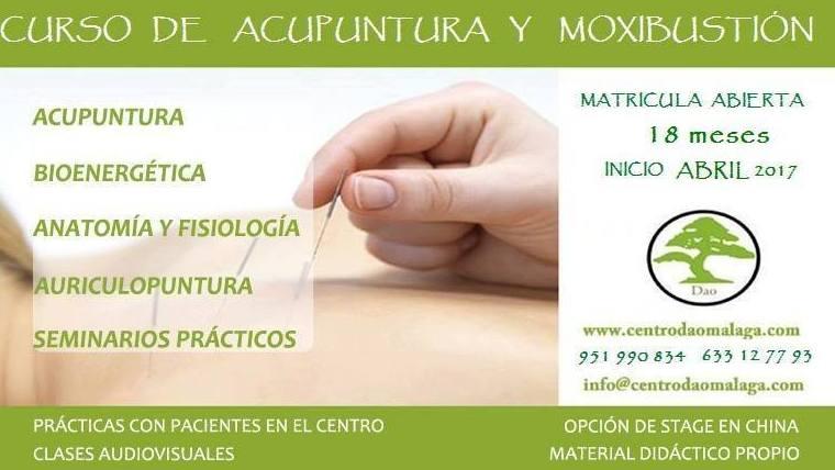 *Cursos de acupuntura Málaga|Centro Dao