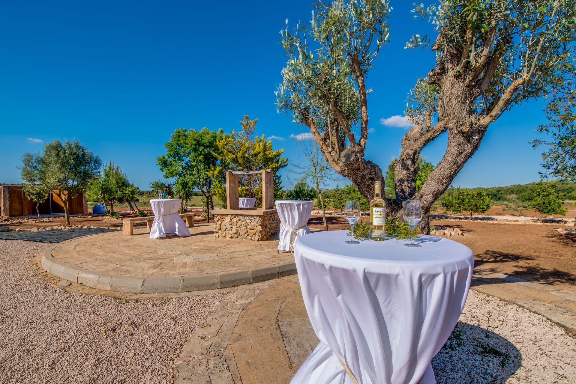 Celebraciones al aire libre en Mallorca
