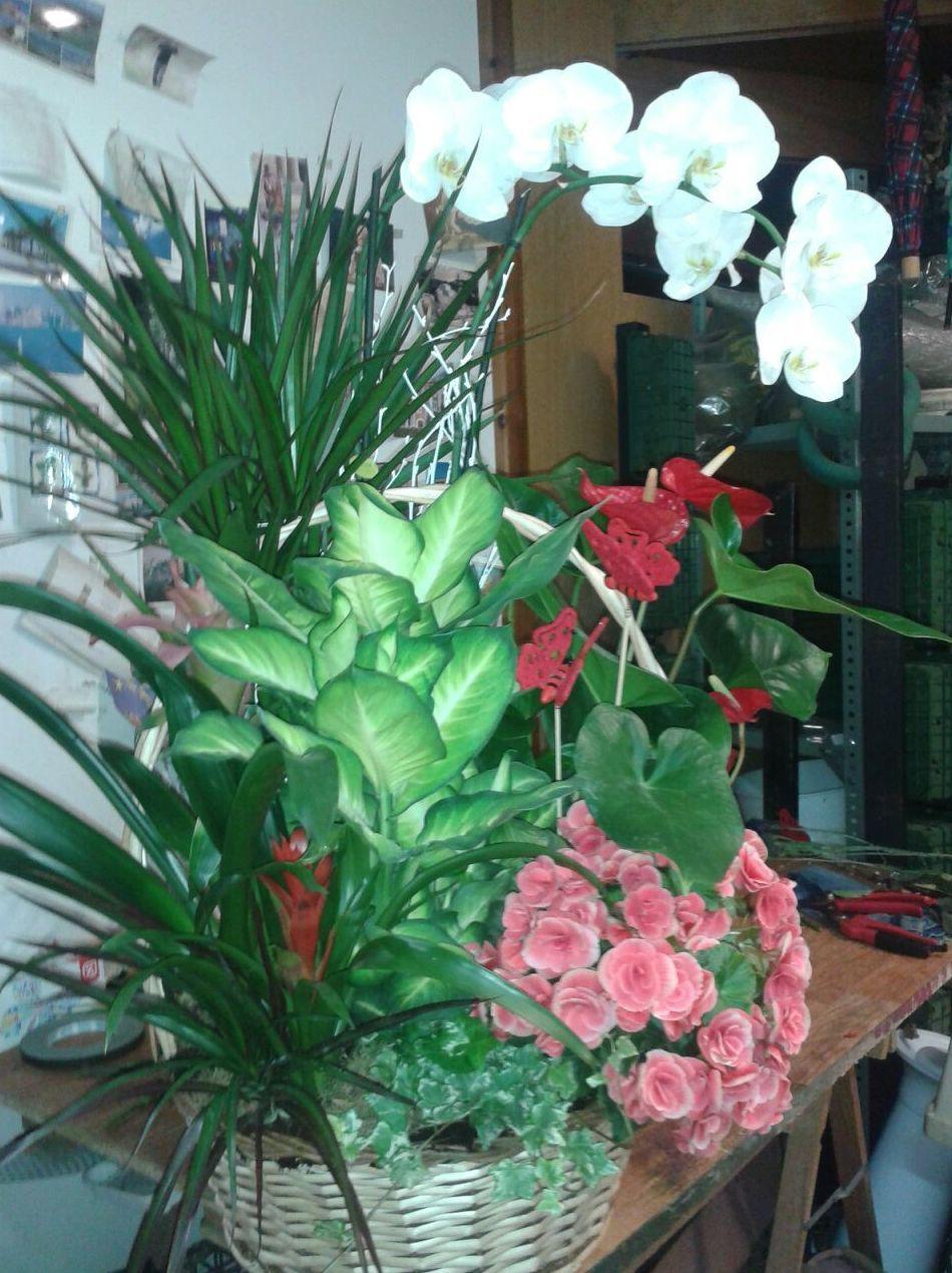 Foto 45 de Floristerías en Soria | Flores Cid Arte Floral