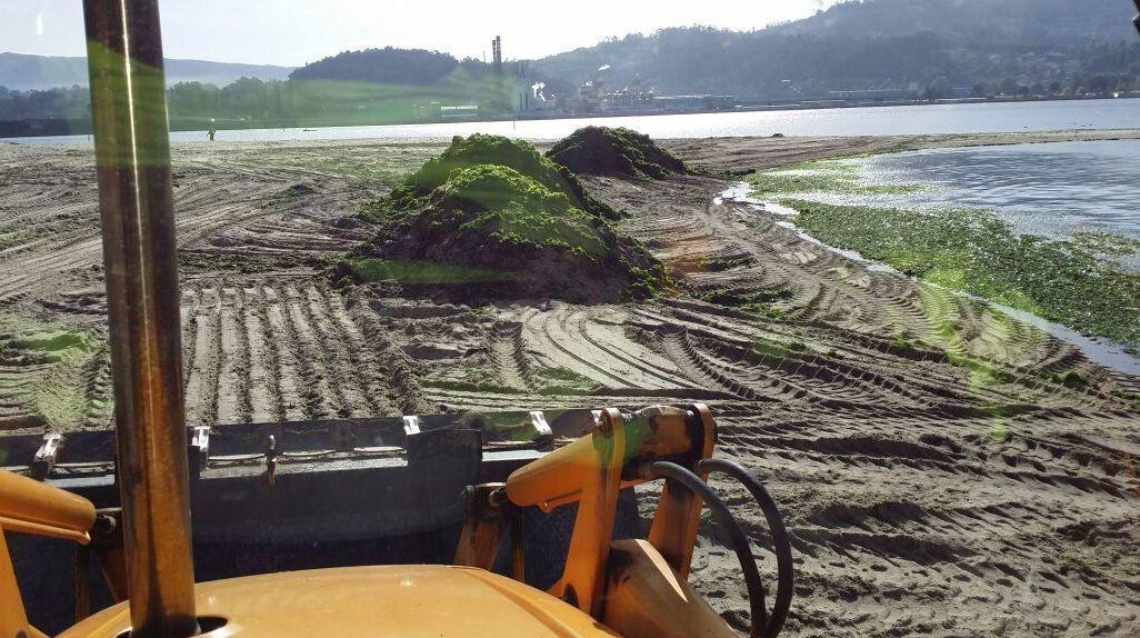 limpieza de playa de lourido-Poio