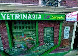 Foto 1 de Veterinarios en Madrid | Clínica Veterinaria Can Contento