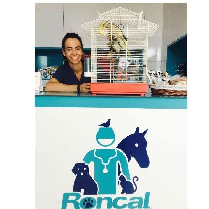 Exóticos: Servicios de Clínica Veterinaria Roncal