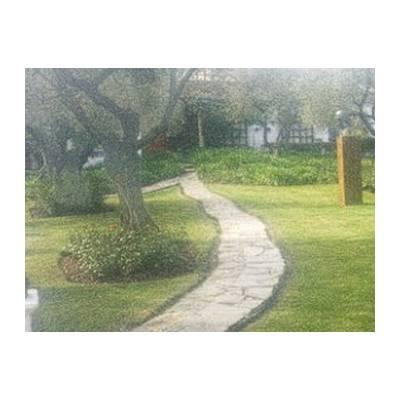 Trabajos de jardinería: Diseño y mantenimiento de Jardinería Alxarafat