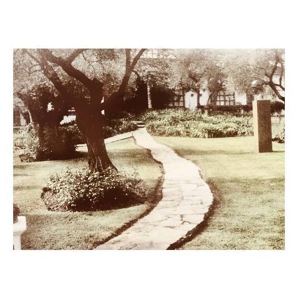 Mantenimientos: Diseño y mantenimiento de Jardinería Alxarafat