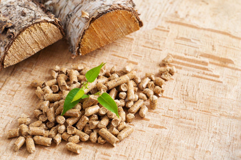 Productos de biomasa en Madrid