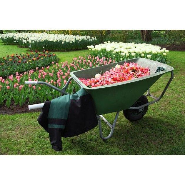 Mantenimiento de jardines: Servicios de Ismed Servicios Integrales